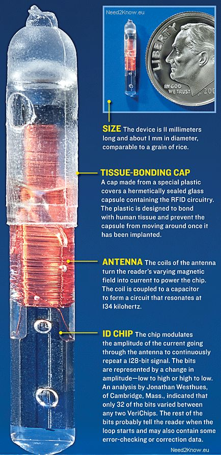 rfid-chip-anatomy