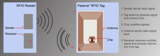 RFID-Chip2