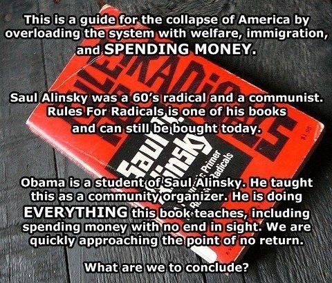 obama_rules_radicals