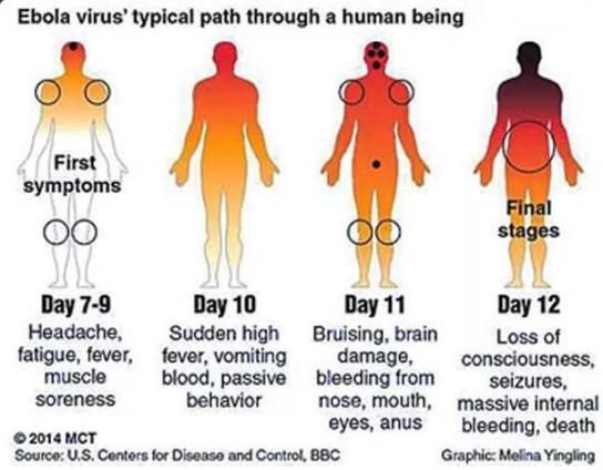 ebola_path