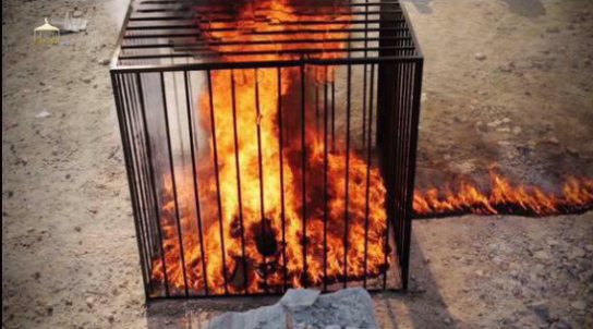 isis-burns-captured-jordanian-pilot-alive-