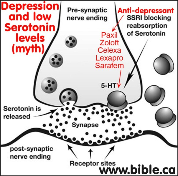 psychiatry-junk-science-anxiety-depression-myth-serotonin-level-nerve-endings-receptor-sites-presynaptic-postsynaptic-neuron-neurotransmitter-ssri-selective-serotonin-reuptake-inhibitor-sarafem-paxil-zoloft-celex