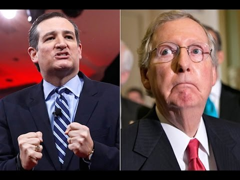 cruz and mcconnell