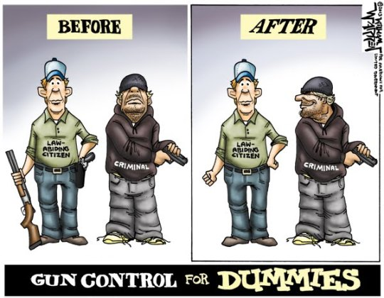 gun control for dummies