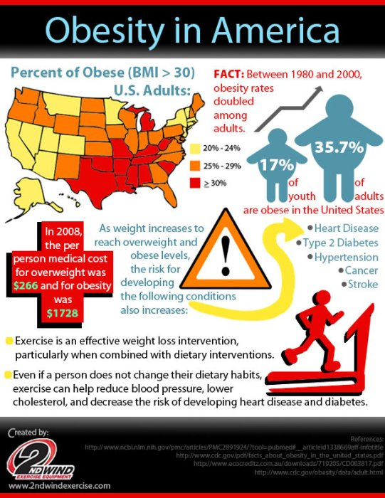 US-Obesity-Statistics-Infographic-CDC-Large