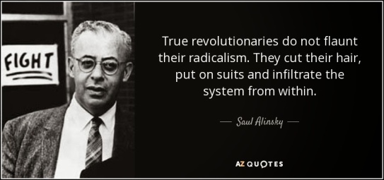 Image result for cartoon saul alinsky rules for radicals