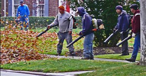 leaf-blowers-from-marsP1120