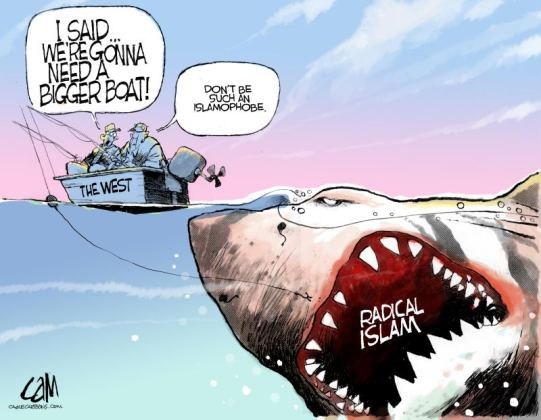 radical islam shark