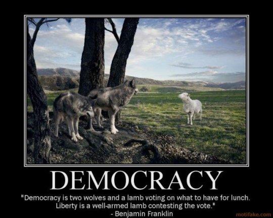 lamb and wolves