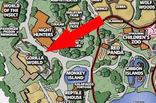 MAIN-gorilla-world-map-Cincinnati-Zoo