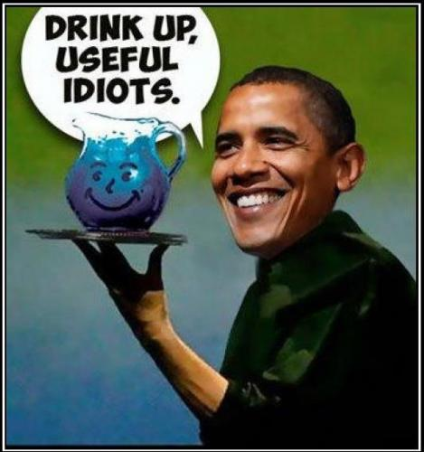 Image result for cartoons kool aid drinkers the media