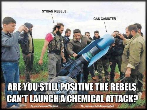 Image result for cartoons syria sarin false flag
