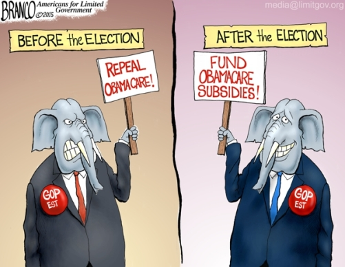 Image result for branco cartoons obamacare failed