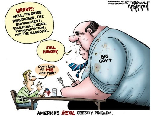 Image result for cartoons on big fat government